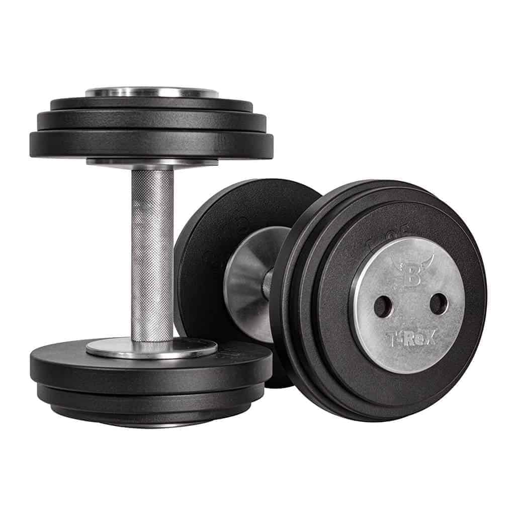 T-rex-dumbbell-from-bullrock-fitness-review-India